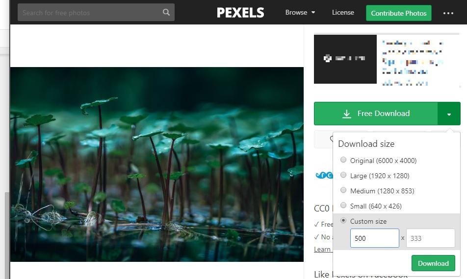 pexels imágenes cortadas a medida