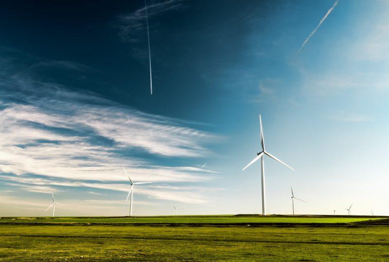 La eficiencia energética apuesta por las energías renovables