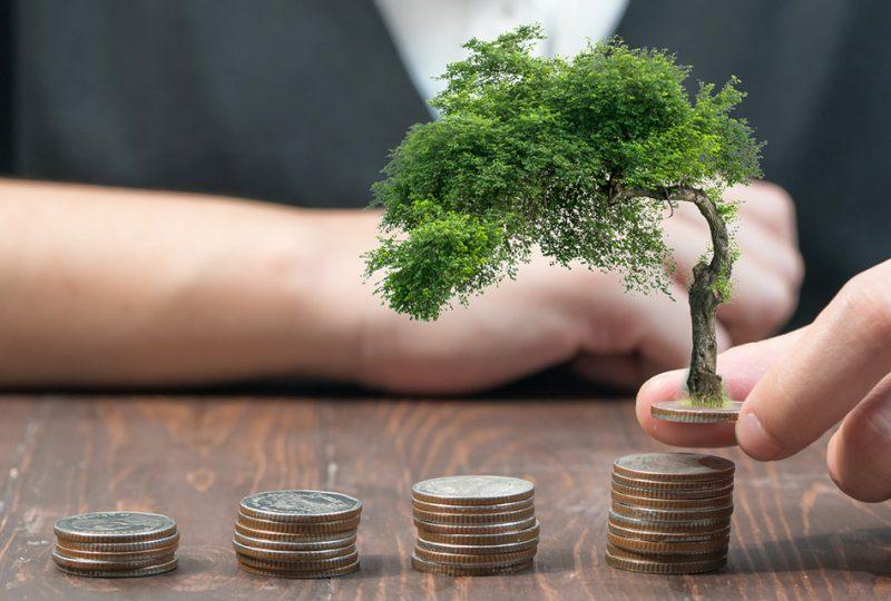 capital riesgo medioambiente capitalismo valores
