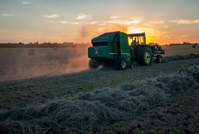 Plataforma Raíces de agricultura y ganadería